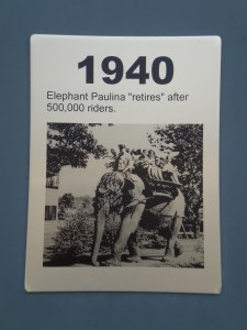 Photograph of Paulina the Elephant, from a historical timeline at the zoo.