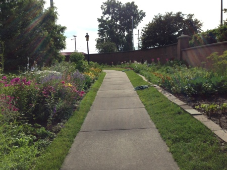 Path through the garden - such beautiful flowers!